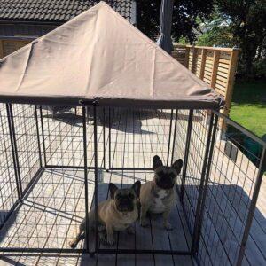bästa Portabel hundhage Nikko