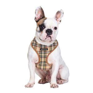 Snygg hundsele urban pup